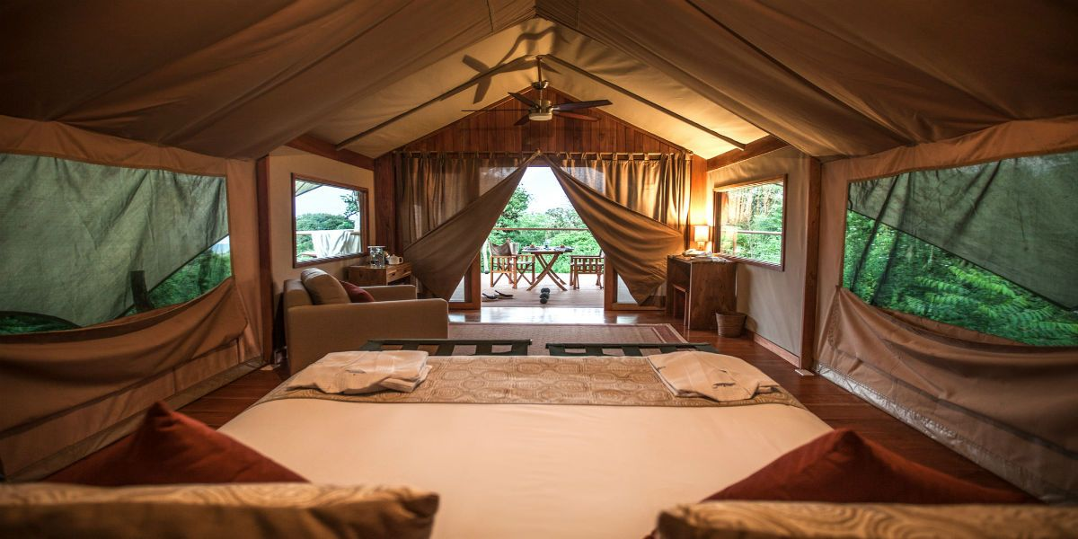 safari-camp-lodge-room-2