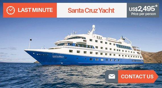 santa-cruz-yacht